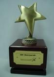 """Награда победителя конкурса """"Инвестор года-2008"""" в номинации """"Строительство жилой недвижимости"""""""